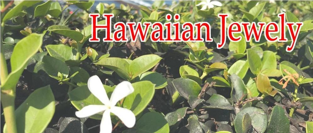 ハワイアンジュエリー